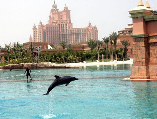 atlantis-hotel-dubai-water-fish