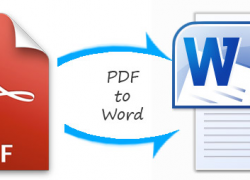 5 Best Free PDF to Word Converters