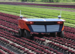 The Efficiency of Robotic application in Agriculture