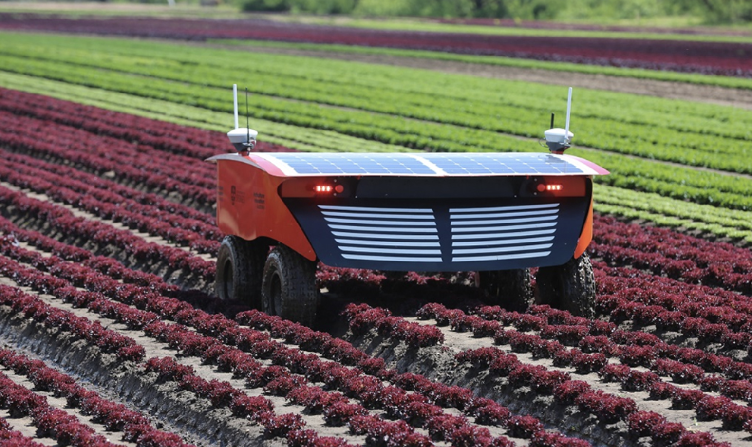 Robotic application in Agriculture